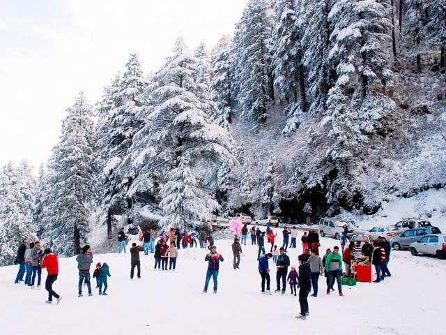http://www.getbookcab.com/Admin/images/kufri-snowfall.jpg